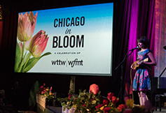 Photo of the WTTW 2016 Gala.